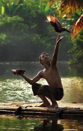 Bambino con uccello